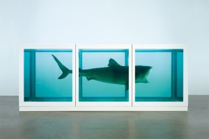 feature_HIRST 48__01__630x420